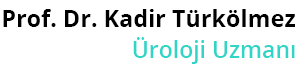 Prof. Dr. Kadir Türkölmez